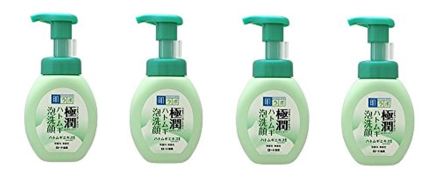 メディックスキャンダル定期的に【まとめ買い】肌ラボ 極潤 ハトムギ泡洗顔 160mL×4個