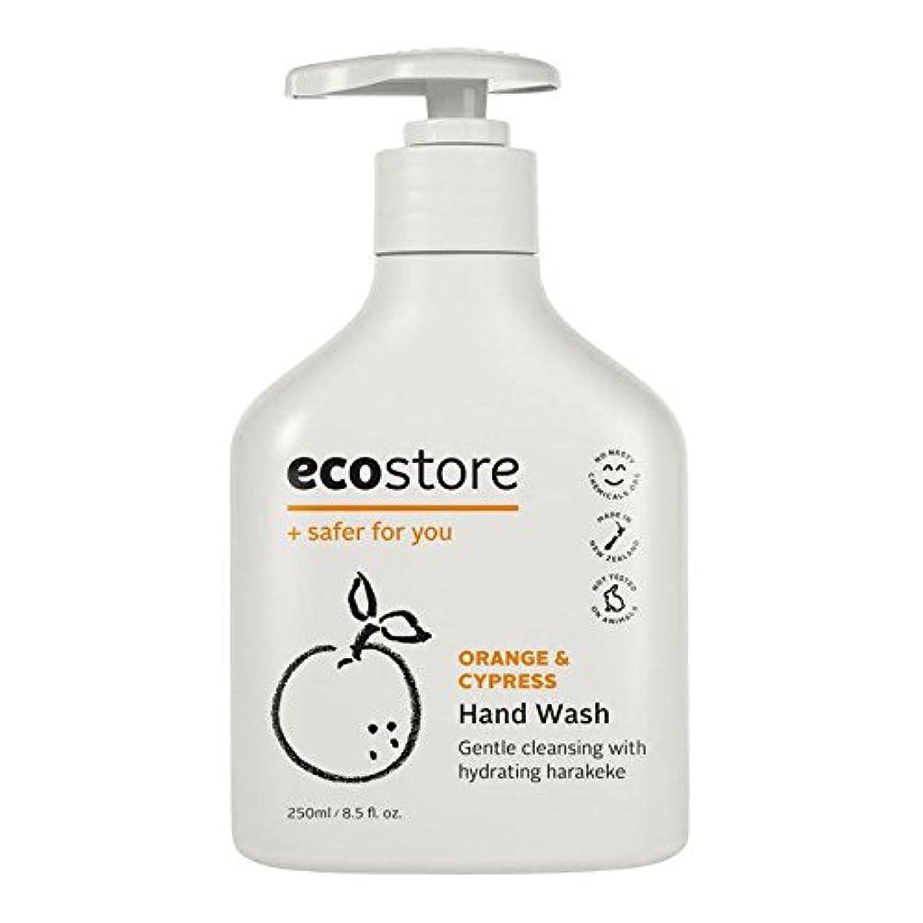 環境マキシム間違っているecostore(エコストア) ハンドウォッシュ 【オレンジ&サイプレス】 250mL 液体タイプ