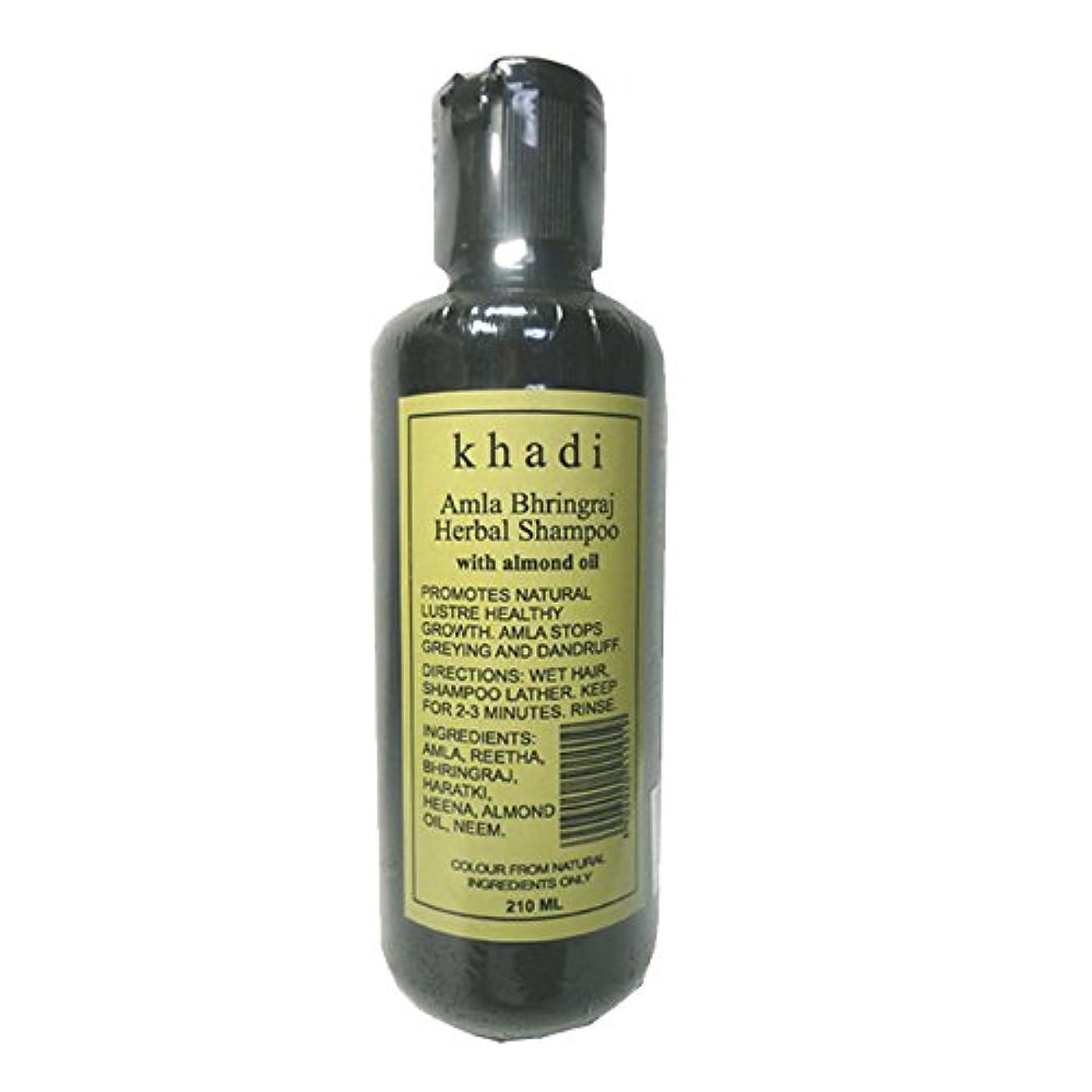 ガレージ反論者役に立たない手作り  カーディ アムラ リーサ ハーバルシャンプー KHADI Amla Rertha  Herbal Shampoo(Amla Bhringraj Herbal Shampoo)