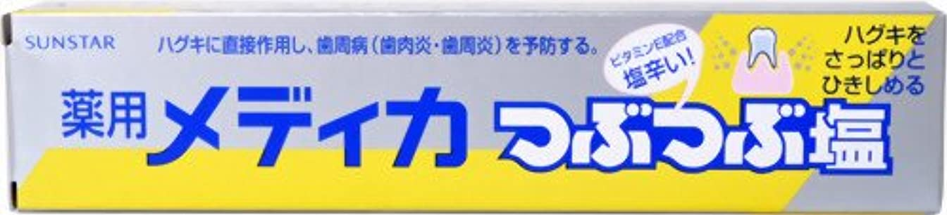 磁気パフ建てる薬用 メディカつぶつぶ塩 170G