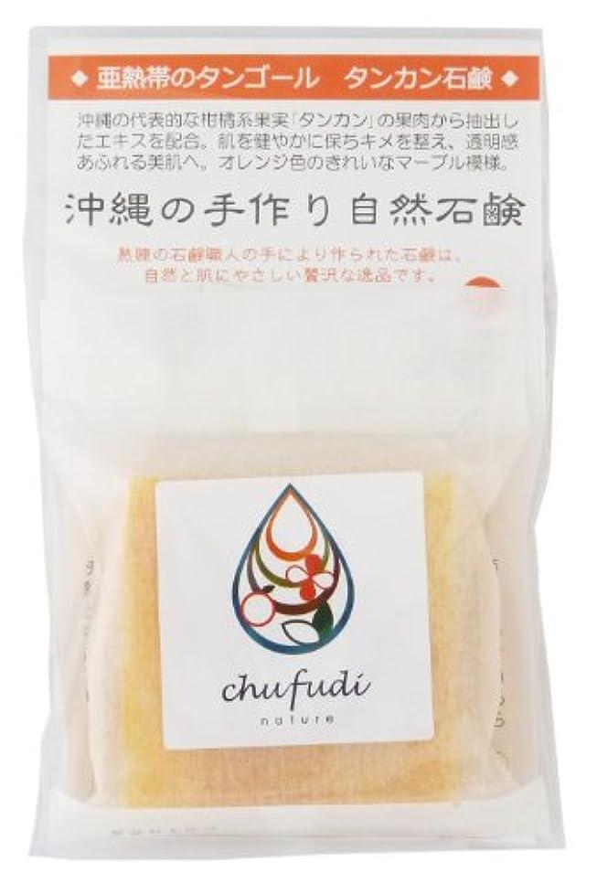 オプション鋼不従順チュフディ ナチュール 亜熱帯のタンゴール マーブルタンカン石鹸
