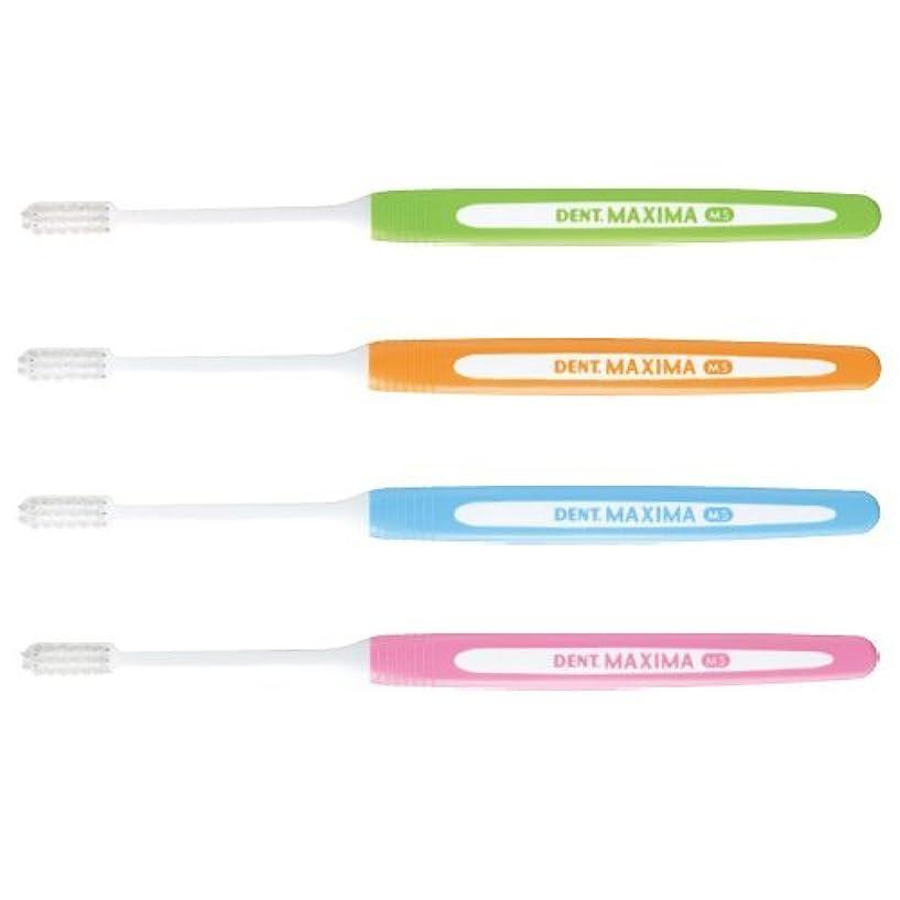 居心地の良い最初に解決マキシマ 歯ブラシ DENT.MAXIMA 6本 アソート (ミディアムソフト (MS))