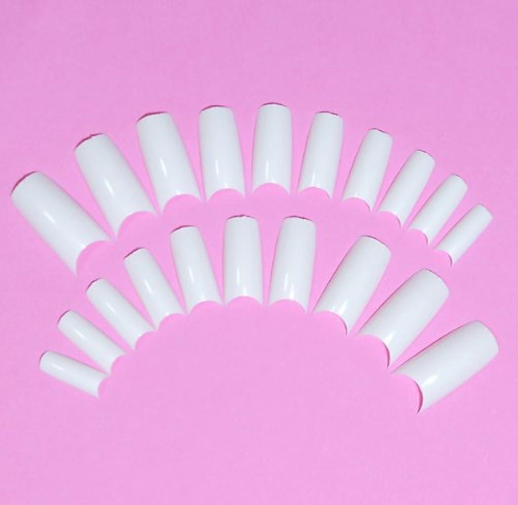 クリア複数プロペラネイルチップ チップオーバーレイ用 20枚入 フレンチホワイト スカルプチャー つけ爪付け爪
