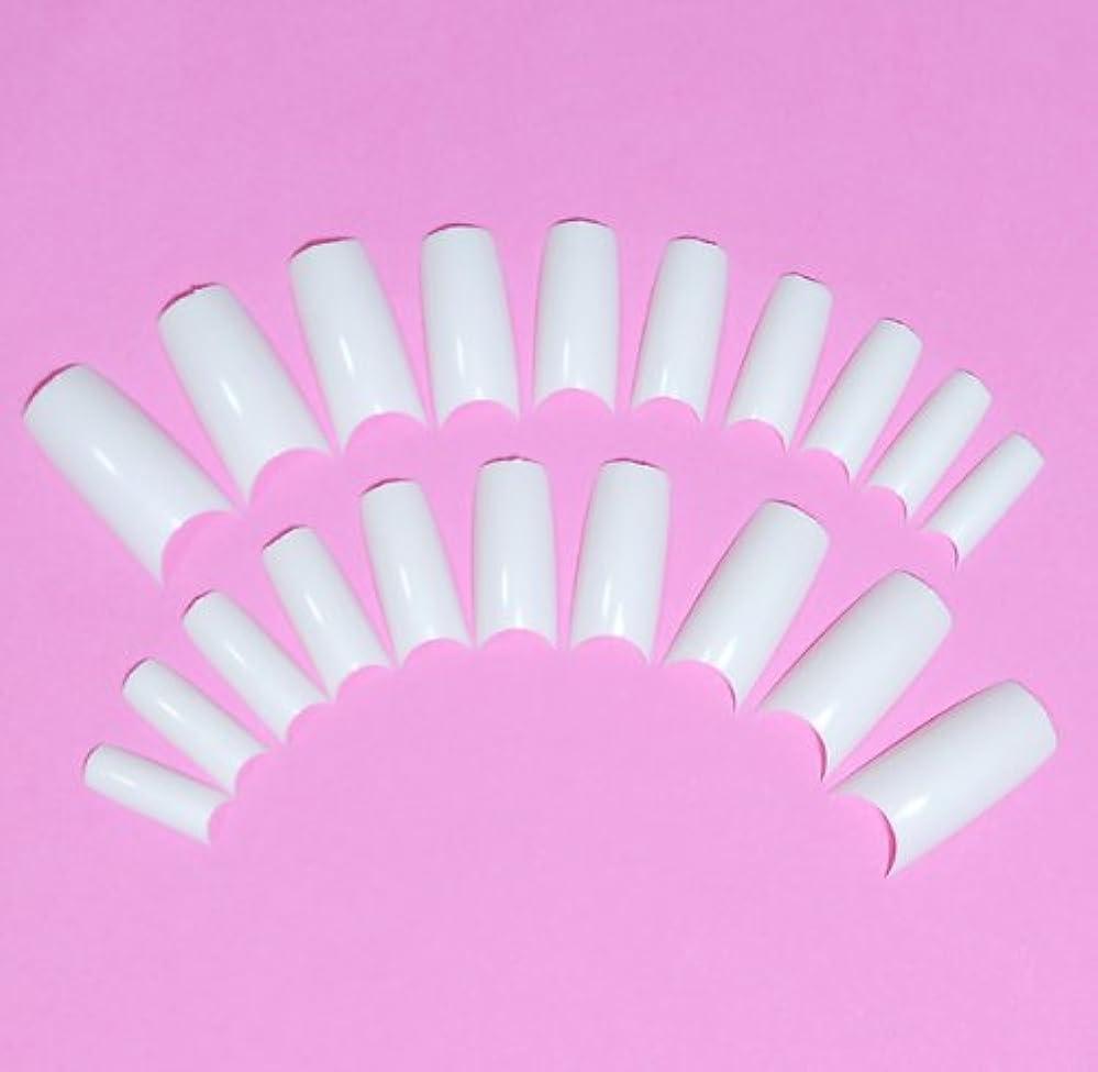 こしょう失効階段ネイルチップ チップオーバーレイ用 20枚入 フレンチホワイト スカルプチャー つけ爪付け爪