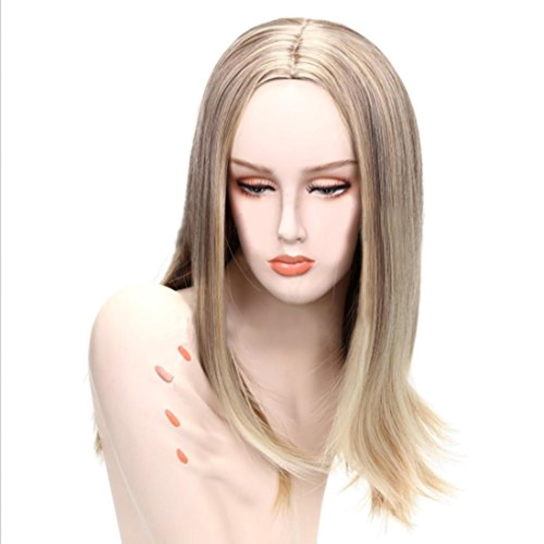 マエストロ韻尊敬JIANFU 女性のためのフルヘッドストレートウィッグロングヘア耐熱化学繊維毛フラットバンまたはロングバンズウィッグナチュラルカラーゴールド28inch / 26inch (色 : Gold black)