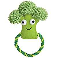 Happy Veggies Rope Tugs Dog Toys - Broccoli
