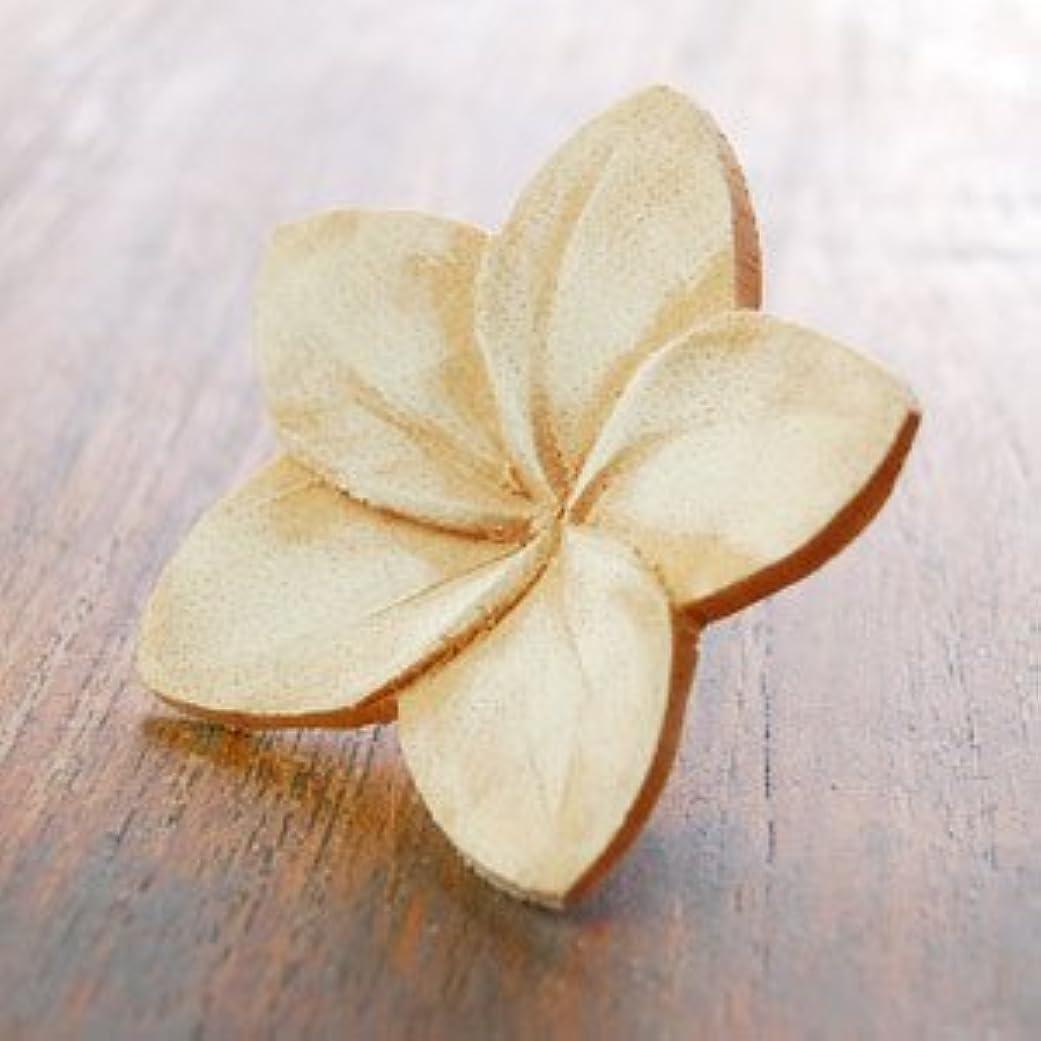 やりすぎハウジング上へ【アジア工房】プルメリアの花びらをモチーフにした木製アロマフラワー[Bタイプ][10892] [並行輸入品]