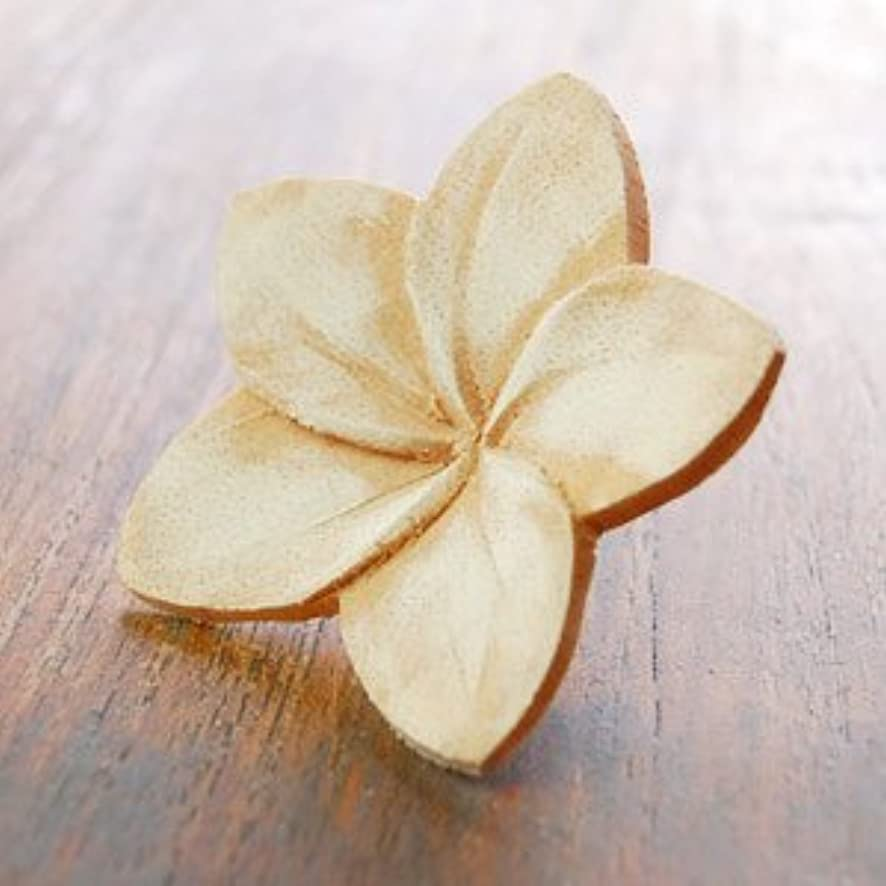 マウントバンクドリンクぜいたく【アジア工房】プルメリアの花びらをモチーフにした木製アロマフラワー[Bタイプ][10892] [並行輸入品]