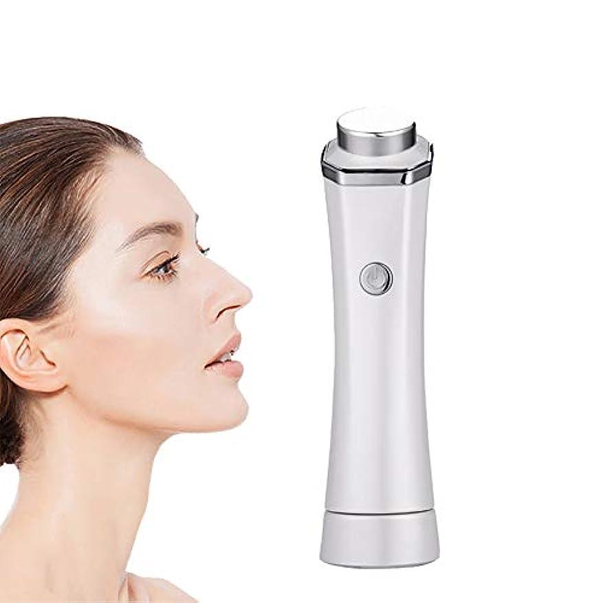 イディオム悪因子かもめフェイシャルクリーニングマッサージ、スキンケア美容機器を充電プロフェッショナルUSB、顔のクリーニングリフティングツール