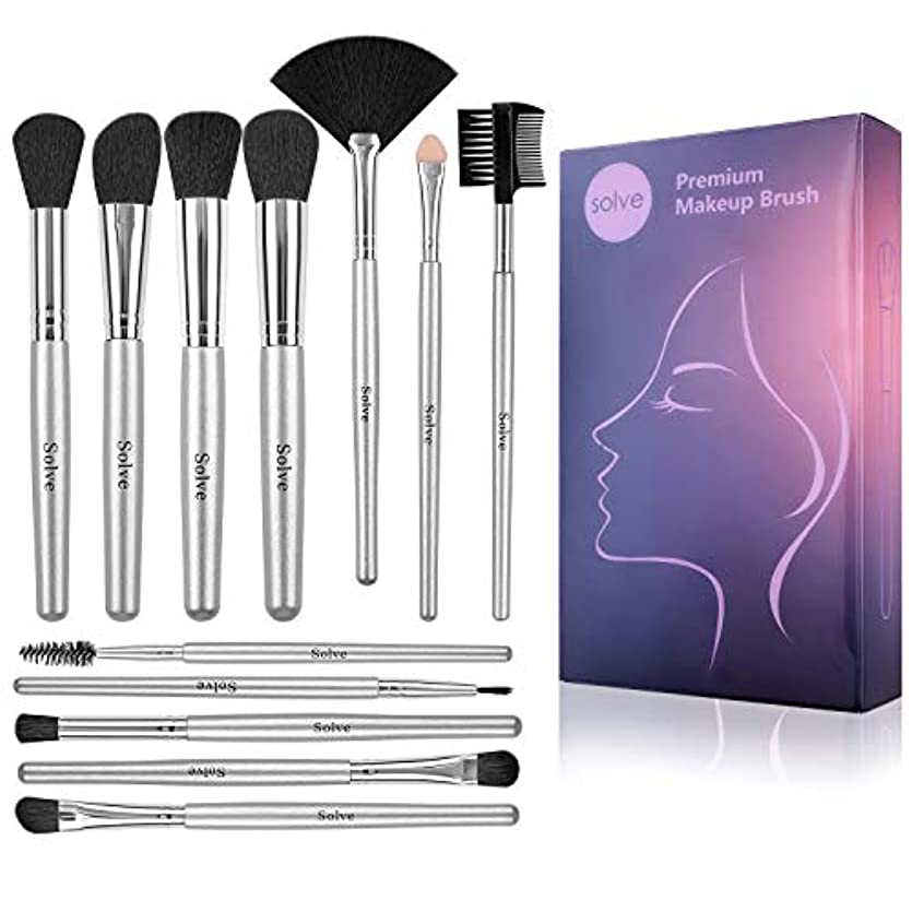 核害やさしいSOLVE メイクブラシ 12本化粧筆 シルバーセット 柔らかい化粧ブラシ 付き収納便利