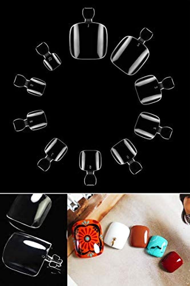 以来正気階shefun ネイルチップ クリア 500枚 ネイル用品 ショート オーバル フルカバー 透明ネイルチップ DIYネイル ネイル飾り 爪と足の爪【10サイズ】JP175 (足の爪用)