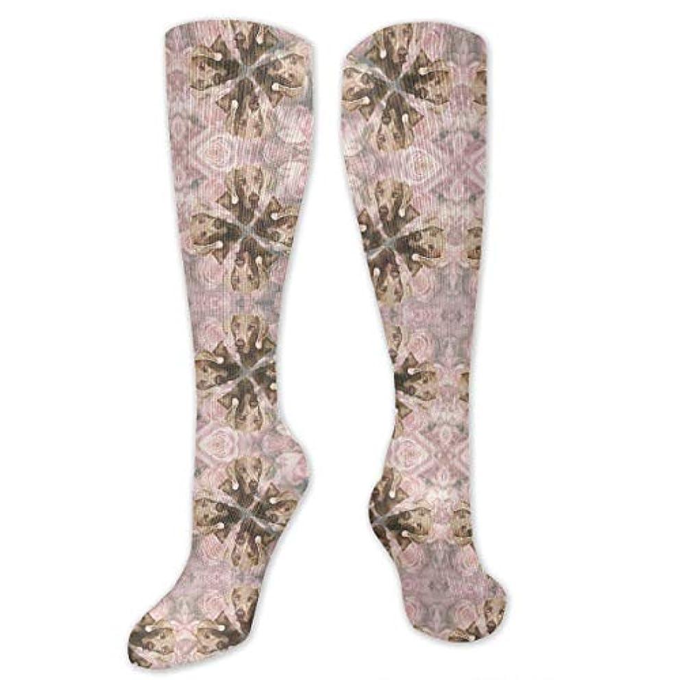 偽物素晴らしいです精査靴下,ストッキング,野生のジョーカー,実際,秋の本質,冬必須,サマーウェア&RBXAA Roses Weimaraner Wallpaper Socks Women's Winter Cotton Long Tube Socks...