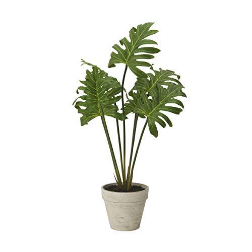RoomClip商品情報 - ドウシシャ 人工観葉植物 グリーン 約52.0cm モンステラ HAC-037