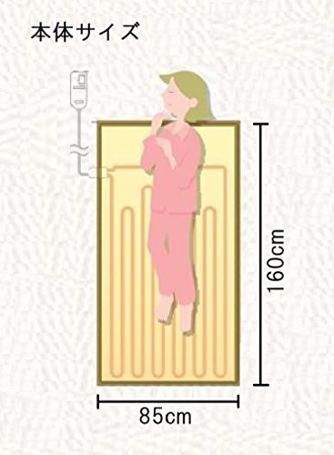 パナソニック 電気しき毛布 丸洗い可 160×85cm DB-U30LS-C