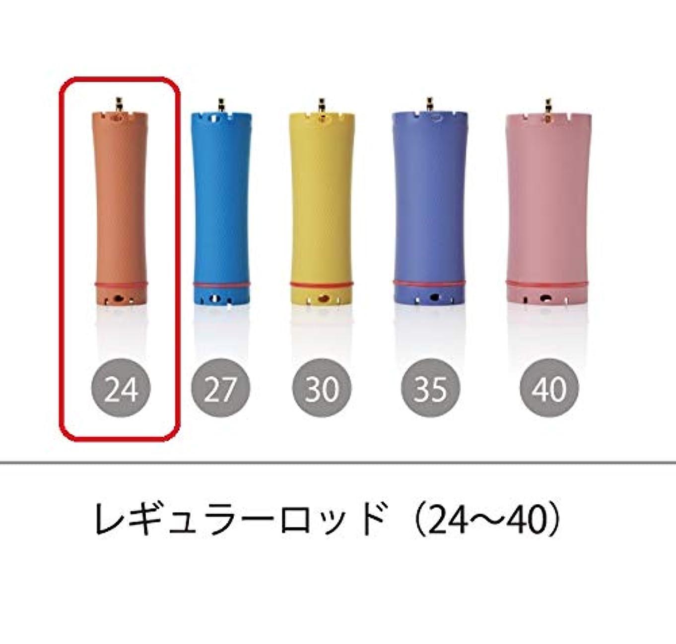捨てる阻害するサドルソキウス 専用ロッド レギュラーロッド 24mm