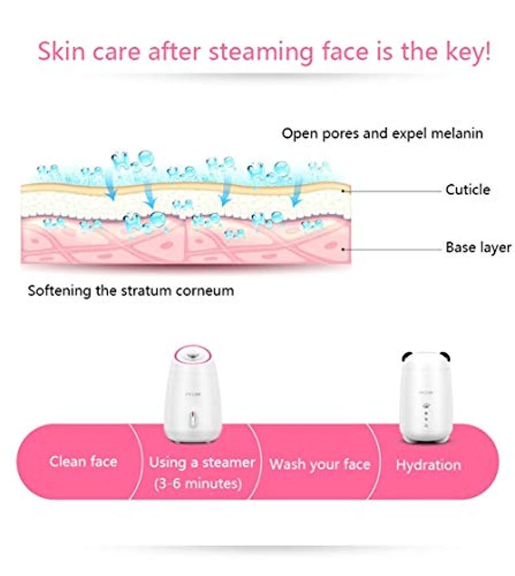 ガイド水平医師ミストモイスチャライジング?フェイシャルSteamerHotミストフェイスSteameにきび洗顔水分補給ホームサウナSPAスキンケアアトマイザー加湿器 (Color : ピンク)