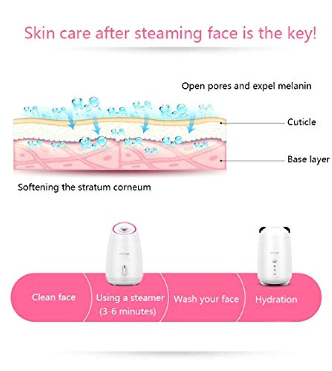 速い不要熱意ミストモイスチャライジング?フェイシャルSteamerHotミストフェイスSteameにきび洗顔水分補給ホームサウナSPAスキンケアアトマイザー加湿器 (Color : ピンク)