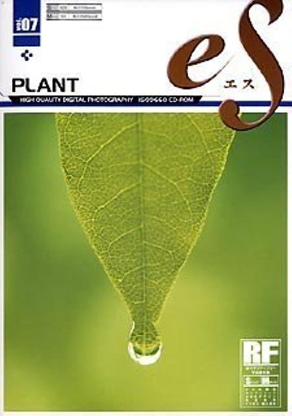 単なるボトルネック嫌がるeS Vol.07 植物 ~PLANT~