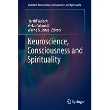 Neuroscience, Consciousness and Spirituality (Studies in Neuroscience, Consciousness and Spirituality Book 1)