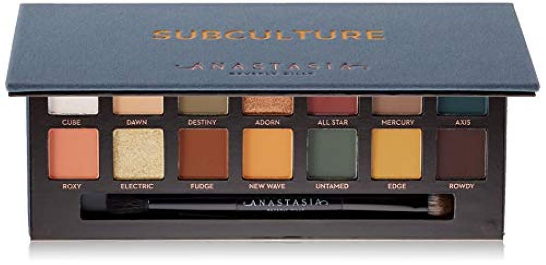 絶え間ない背景スピーチANASTASIA BEVERLY HILLS Subculture Eyeshadow Palette