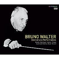 ワルター 不滅のライヴ (Bruno Walter ~ Eternal Live Performances / Dvorak | Beethoven | Mahler | Chopin | Goldmark | Brahms | Ravel | Mozart) [6CD] [Live Recording] [日本語帯・解説付]