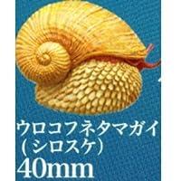 ネイチャーテクニカラーMONO PLUS 深海生物 ボールチェーン&マグネット2 [8.ウロコフネタマガイ(白スケ):マグネット](単品)