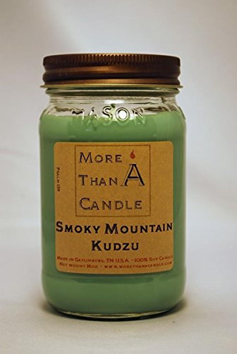 銀河認識うっかりMore Than A Candle SMK16M 16 oz Mason Jar Soy Candle, Smoky Mountain Kudzu