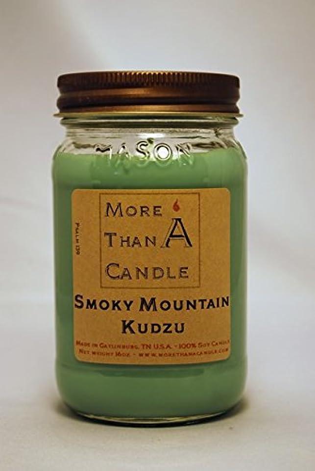 中性前任者再生可能More Than A Candle SMK16M 16 oz Mason Jar Soy Candle, Smoky Mountain Kudzu