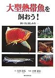 大型熱帯魚を飼おう!