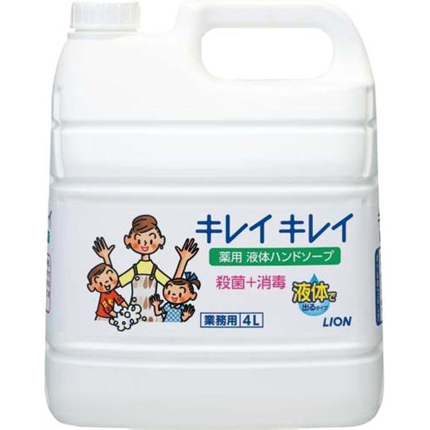 パーツ織る商標ライオンハイジーン キレイキレイ薬用ハンドソープ 業務用 4L×3本