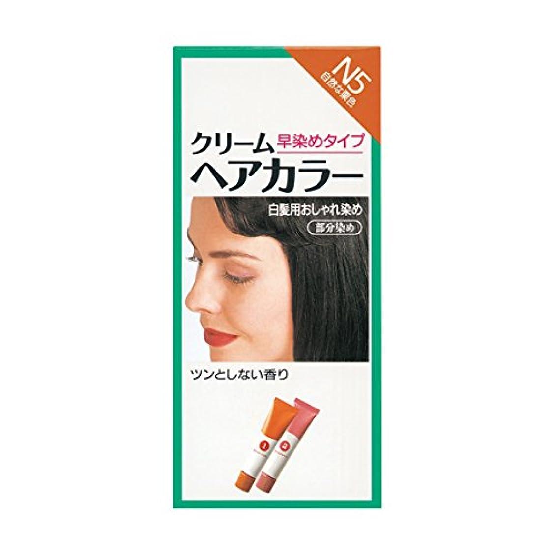 ライオンチューブ独立したヘアカラー クリームヘアカラーN N5 【医薬部外品】