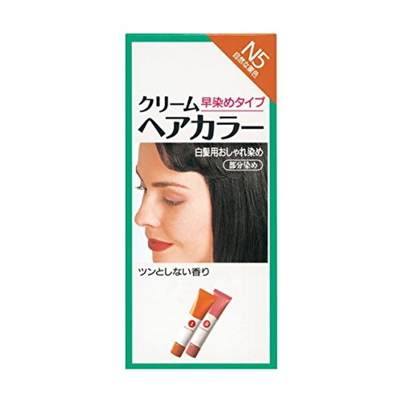 メロディーギャンブル部分的ヘアカラー クリームヘアカラーN N5 【医薬部外品】