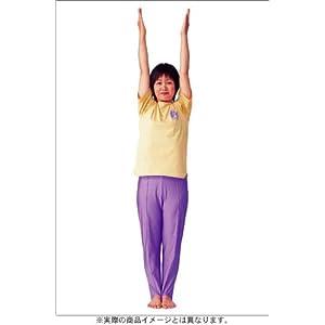 気力充実 ! 健康体操 自彊術 入門編・実践編 [DVD]