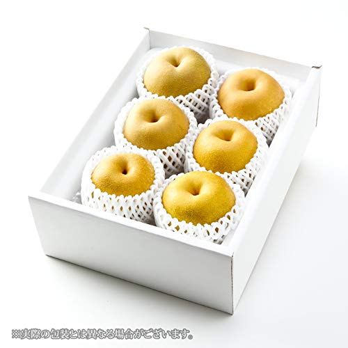 梨 秋甘泉 あきかんせん  5L?4Lサイズ 5?6玉 約2.4kg 鳥取県産 JAとっとり ナシ なし 新甘泉 姉妹品種 旬のフルーツ