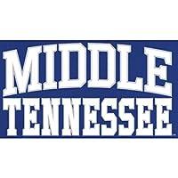 Fanatics Branded Mid. Tenn. St. Blue Raiders Royal Everyday Pullover Hoodie スポーツ用品 5XL 【並行輸入品】