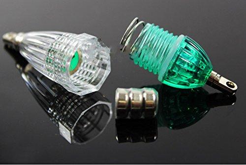【オルルド釣具】 集魚灯 高輝度LED採用 水中集魚ライト 5カラーセット 太刀魚・イカ・アジ釣り等に最適 電池付 完全防水(水深300mまで対応) 5色 夜釣り・ナイトフィッシングに最適 ホワイト/レッド/ブルー/グリーン/レインボー 5色5個セット qb700002a01n0