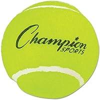 テニスボールcsitb3 WLM