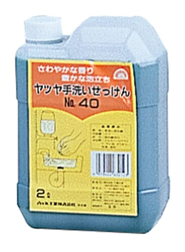 がんばり続ける理解ずっとYATSUYA 手洗いせっけん#40 2L 69064