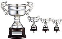 WIN SILVER 優勝カップ  LS-351A