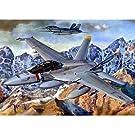 アメリカ海軍 F/A-18F スーパーホーネット (1/32) (03205)