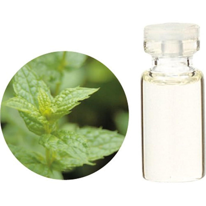 水サポート統治可能Herbal Life スペアミント 10ml