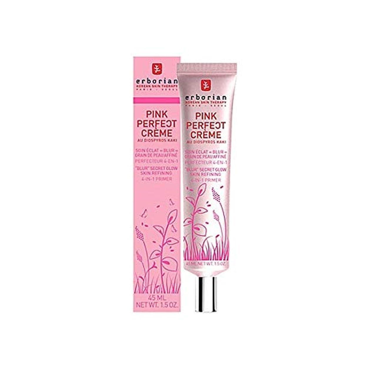 知事八ミシン[Erborian] Erborianピンクの完璧なクリーム15ミリリットル - Erborian Pink Perfect Creme 15ml [並行輸入品]