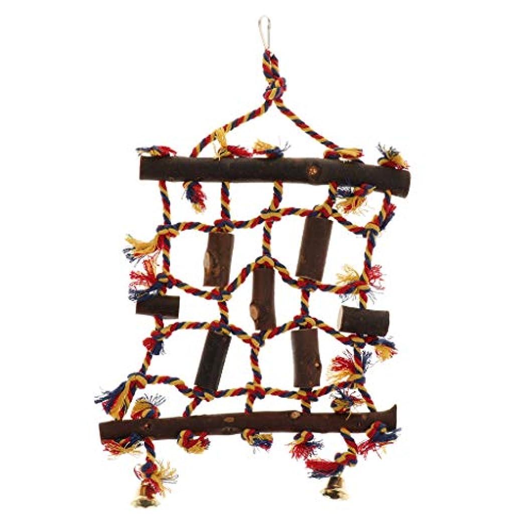 グリーンランド気絶させるく小型動物用品 鳥 オウム ケージ はしご ネット 吊り玩具 クライミング ストレス解消 運動