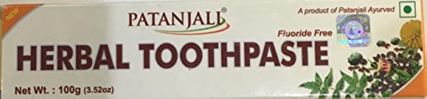 定期的にフレット滴下Patanjali herbal toothpaste 100g