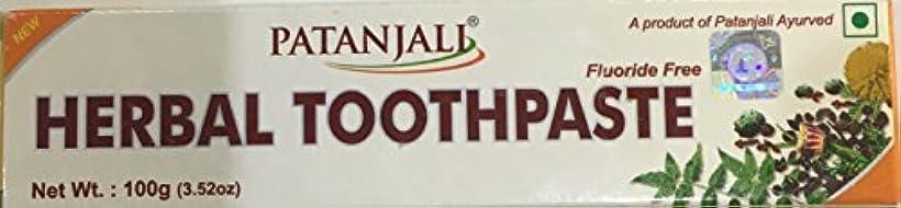 小人エトナ山面積Patanjali herbal toothpaste 100g
