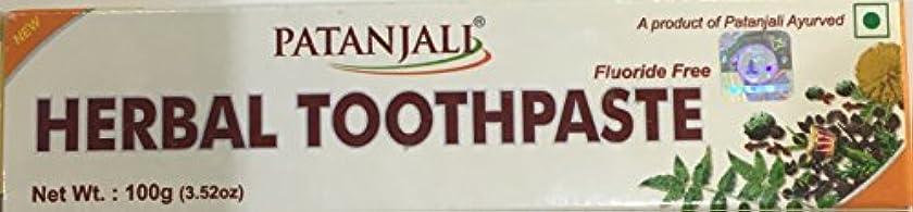 狂う仮称セージPatanjali herbal toothpaste 100g