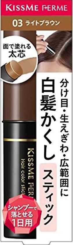 仲間パース未来フェルム 白髪カバースティック 03 ライトブラウン