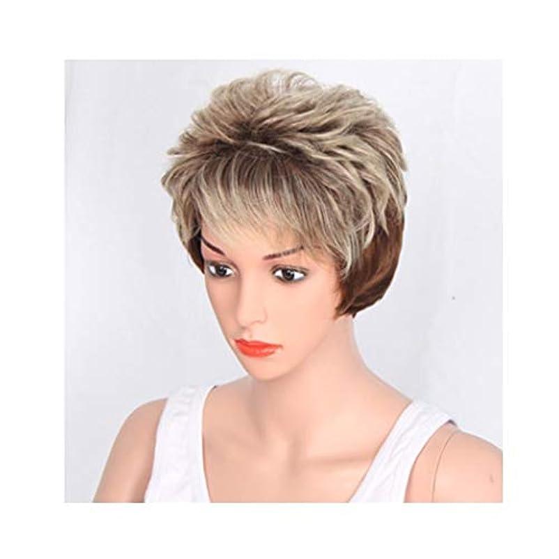 ガイドライン高める正規化YOUQIU 高温シルクウィッグセットダブル色のふわふわショートヘアエア前髪ウィッグは前髪ウィッグ傾斜することができます (色 : Double color)
