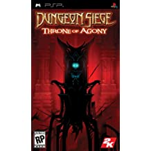 Dungeon Siege: Throne of Agony / Game