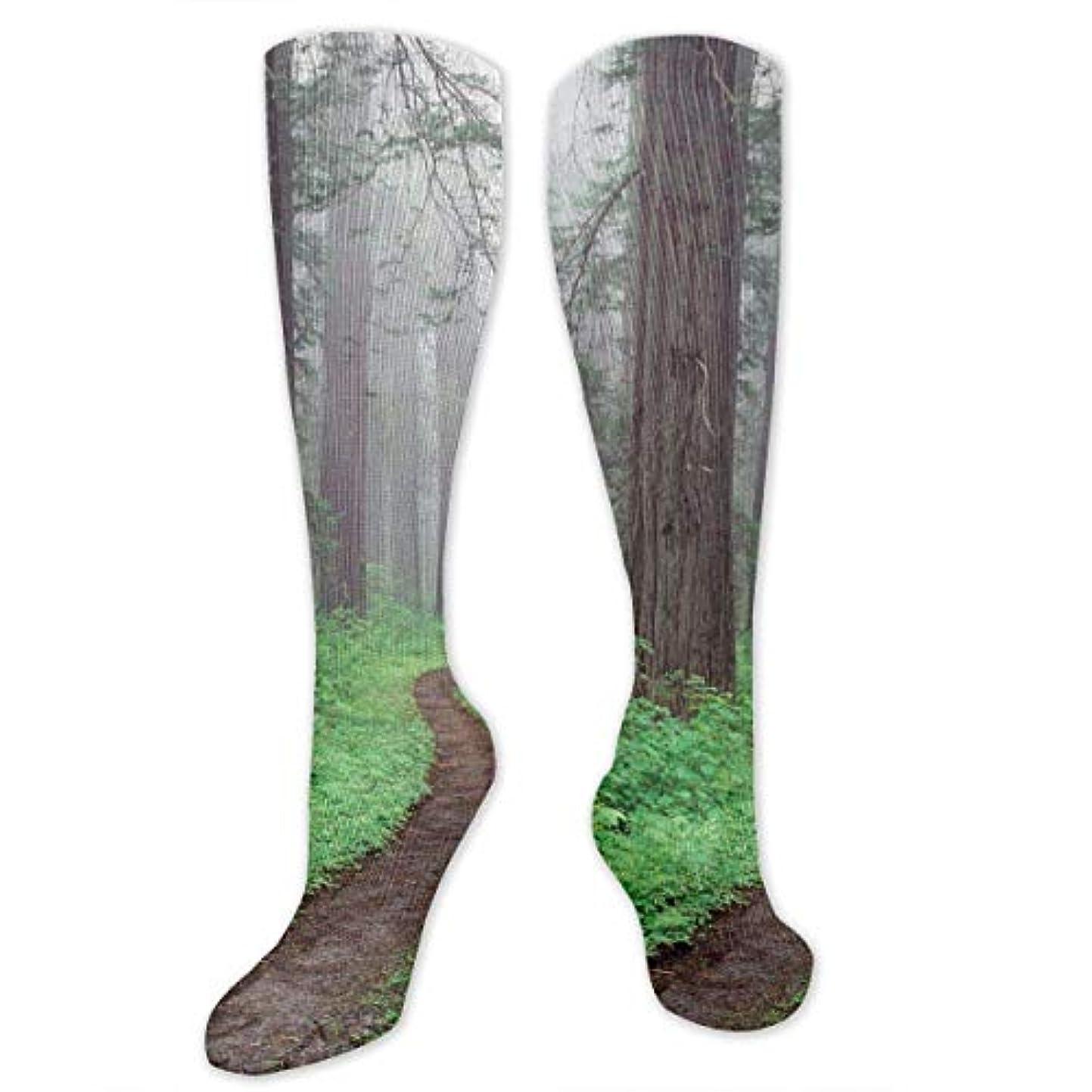 計器敬の念として靴下,ストッキング,野生のジョーカー,実際,秋の本質,冬必須,サマーウェア&RBXAA Redwood National Park California Socks Women's Winter Cotton Long...
